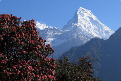 annapurna_south